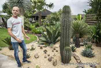 """Ronny heeft tropische tuin tussen de dennenbomen: """"Ik blijf een Kempenaar in mijn eigen Thailand"""" - Het Nieuwsblad"""