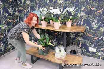 """Al jaren telt deze gemeente geen enkele bloemenwinkel meer, maar daar brengt Ilse nu verandering in: """"Mensen gunnen zich in deze tijden graag een bloempje"""" - Het Nieuwsblad"""