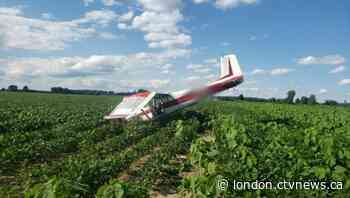 Pilot escapes injuries after plane crashes in a bean field near Tillsonburg, Monday - CTV News London