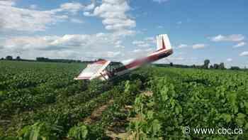 Man escapes injury after plane crashes near Tillsonburg - CBC.ca