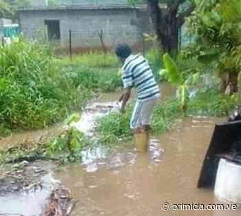 Sectores de Upata afectados por la lluvia - primicia.com.ve