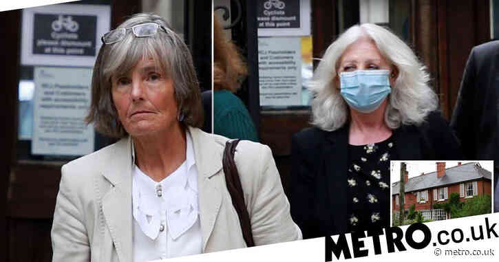 Woman in £200,000 court battle after neighbour's wasp nest left her 'a prisoner'