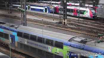 «S'il y avait eu un défibrillateur, on aurait pu le sauver» : colère après un décès dans le TER - Le Parisien