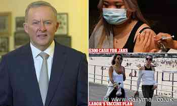 The Project hosts GRILL Anthony Albanese over $300 to get coronavirus vaccine jab
