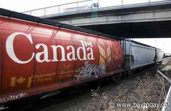 Canadian railways expect weaker crop year after moving record grain in 2020-2021
