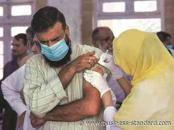 Gujarat coronavirus update: 17 new Covid cases; active infections at 226 - Business Standard