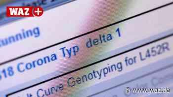 Corona-Fälle in Duisburg: So dominant ist die Delta-Variante - WAZ News