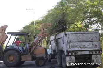 Retiran basurero clandestino en camino al Ejido La Presa, en Victoria - La Verdad de Tamaulipas