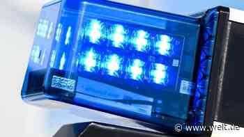 Handgranate in verschlammtem Auto entdeckt - DIE WELT