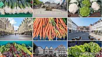 Hanse-Ausstellung in Brilon zeigt Bilder, die verbinden - Westfalenpost