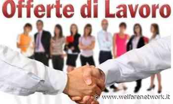 Attive 122 offerte lavoro CPI 03/08/2021 Cremona,Crema,Soresina e Casal.ggiore - WelfareNetwork