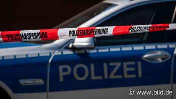 Leipzig: 18-Jähriger in Stadtpark niedergestochen - BILD