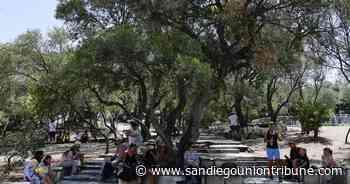 Grecia: cientos abandonan sus viviendas ante incendio - San Diego Union-Tribune en Español