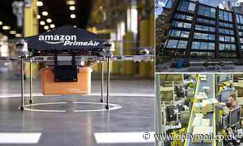 Amazon ditches drone delivery plans despite years of planning and months of trials