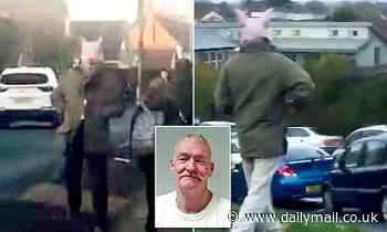 Ex-soldier, 57, jumped out in front of school children wearing a PIG MASK