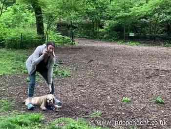 'Central Park Karen' speaks out after viral video attack on Black bird spotter
