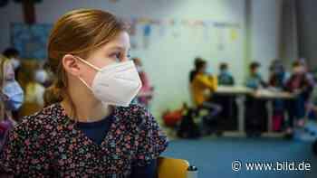 Corona: So schnell werden Kinder mit dem Virus fertig - BILD