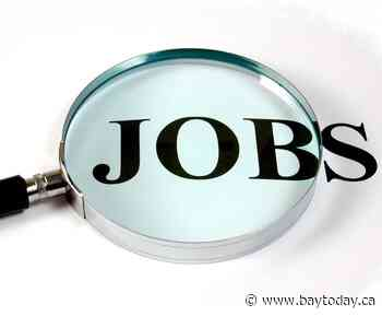 ' Large increase' in local job postings says The Labour Market Group
