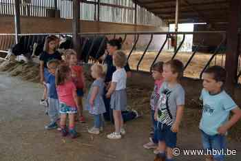 Kinderboerderij Het Fleckje leert kinderen over de boerderij - Het Belang van Limburg