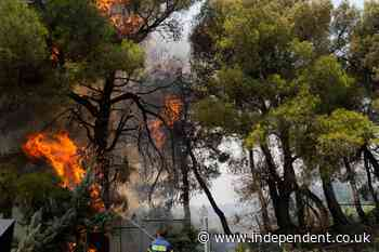Thousands evacuated in Athens suburb as fires rage amid worst heatwave in 30 years