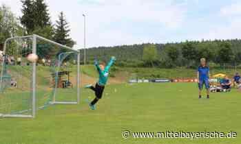 Gastgeber siegt bei F-II-Jugend - Sport aus Amberg - Nachrichten - Mittelbayerische