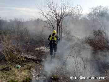 Se registraron incendios de pastizales en los barrios Santa Ana I, Bancario y San Carlos - https://radiodinamo.com/