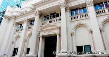 El Banco Central acumuló ventas por U$S 310 millones en los últimos 4 días - Revista Chacra