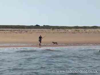 Fishermen rescue woman forced to fight wild coyote off with a stick