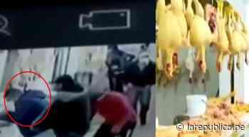 La Victoria: banda criminal robó S/ 15.000 a comerciante de pollos - La República Perú