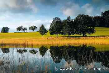 Der Eichener See ist wieder da - Schopfheim - Badische Zeitung - Badische Zeitung