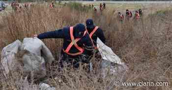 Búsqueda de Guadalupe: analizan pelos humanos hallados en un descampado y convocan a una marcha nacional - Clarín
