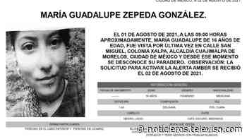 Activan Alerta Amber para localizar a María Guadalupe Zepeda González - Noticieros Televisa