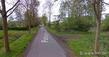 35-jarige Bornemnaar overlijdt na crash tegen boom in Pastoor Huveneersstraat - Het Laatste Nieuws