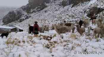 Moquegua: anexos de Sánchez Cerro soportaron intensas nevadas - La República Perú