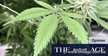 Victoria lagging on cannabis law reform