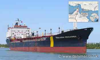 Oil tanker hijack: Iranian commandos fled after crew disabled engines