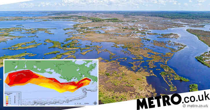 The Gulf of Mexico has a 'dead zone' where there isn't enough oxygen to support life