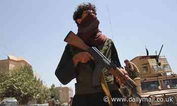 Taliban 'executed 900 people' as Islamists overran Kandahar