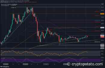 Binance Coin Analysis: Will BNB Bulls be Able to Defend This Critical Support? - CryptoPotato