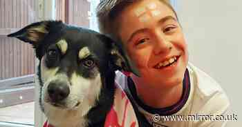 Boy, 13, with cerebral palsy told 'he shouldn't play footie' by cruel trolls online