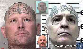 Five 'Aryan Brotherhood members'  won't appear in person for court over fears they'll escape custody