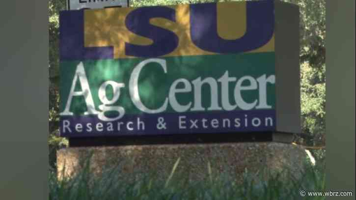 LSU AgCenter receives grant to improve vaccination rates