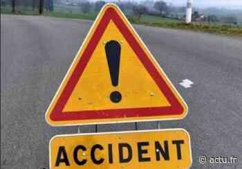 Accident sur l'axe reliant Toulouse à Castres : deux blessées... et un homme mordu par un chien ! - La Voix du Midi Lauragais