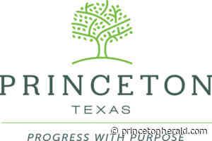 Candidates begin filing for November election | Princeton - Princeton Herald