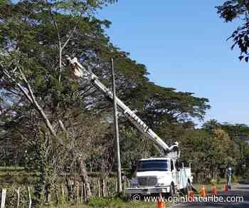 Air-e realiza mantenimientos eléctricos preventivos en Sitionuevo - Opinion Caribe