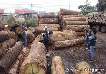 Junín: Decomisan en Satipo madera ilegal valorizada en S/39 mil - INFOREGION