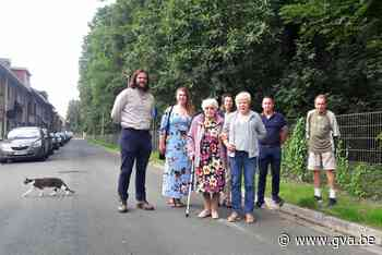 """Bewoners Wirixdreef in Niel strijden voor 'hun' bomen: """"Er mag er geen enkele weg"""" - Gazet van Antwerpen"""