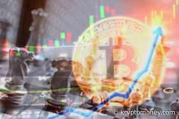Dogecoin, Internet Computer, Qtum, Alpha Finance, OKB, Badger DAO Rally As Bitcoin Climbs Past $44K - KryptoMoney