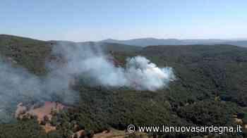 Ancora fiamme a Santu Lussurgiu dove è atteso il ministro Patuanelli - La Nuova Sardegna
