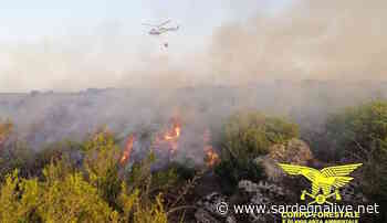 Ancora fiamme in Sardegna: elicotteri in volo ad Arzana e Santu Lussurgiu - Sardegna Live